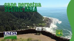Cape Perpetua Visitor Center, Special Programs, Scenic Trails & Guided Hikes